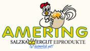 amering_logo